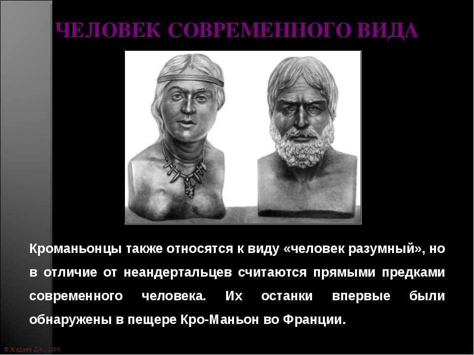 © Жадаев Д.Н., 2005 ЧЕЛОВЕК СОВРЕМЕННОГО ВИДА Кроманьонцы также относятся к в...