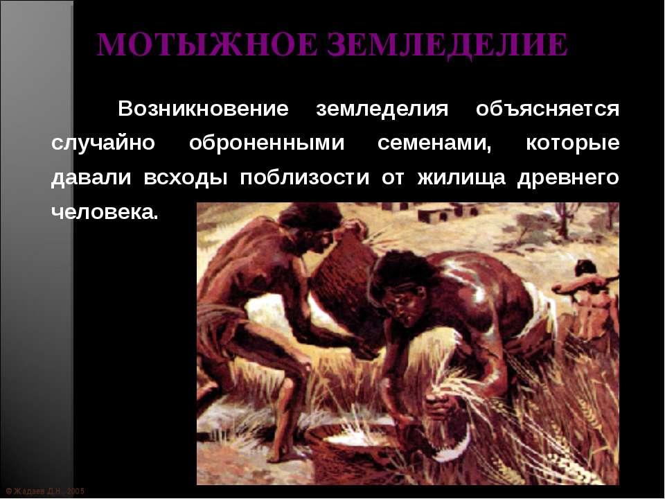 © Жадаев Д.Н., 2005 МОТЫЖНОЕ ЗЕМЛЕДЕЛИЕ Возникновение земледелия объясняется ...