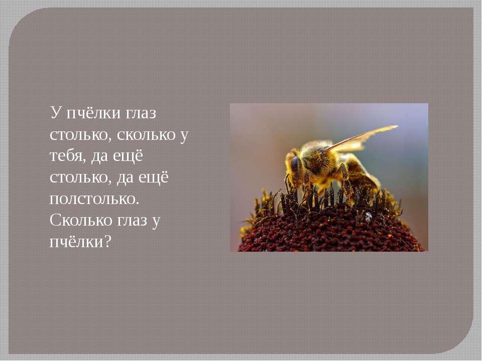 У пчёлки глаз столько, сколько у тебя, да ещё столько, да ещё полстолько. Ско...