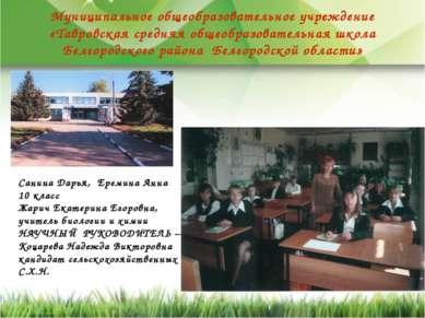 Муниципальное общеобразовательное учреждение «Тавровская средняя общеобразова...