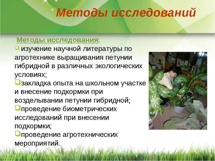 изучение научной литературы по агротехнике выращивания петунии гибридной в ра...