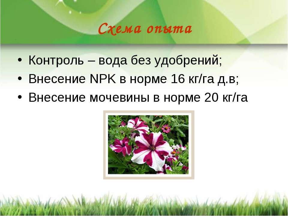 Схема опыта Контроль – вода без удобрений; Внесение NPK в норме 16 кг/га д.в;...