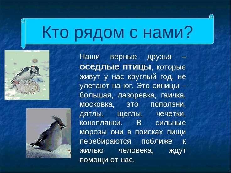 Кто рядом с нами? Наши верные друзья – оседлые птицы, которые живут у нас кру...