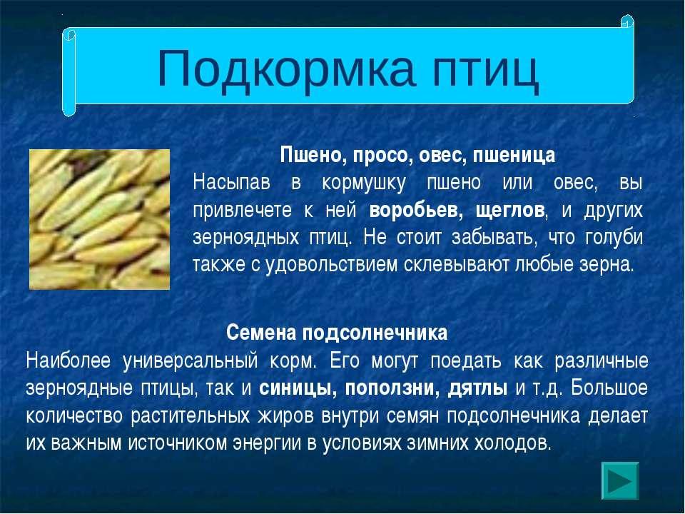 Подкормка птиц Пшено, просо, овес, пшеница Насыпав в кормушку пшено или овес,...