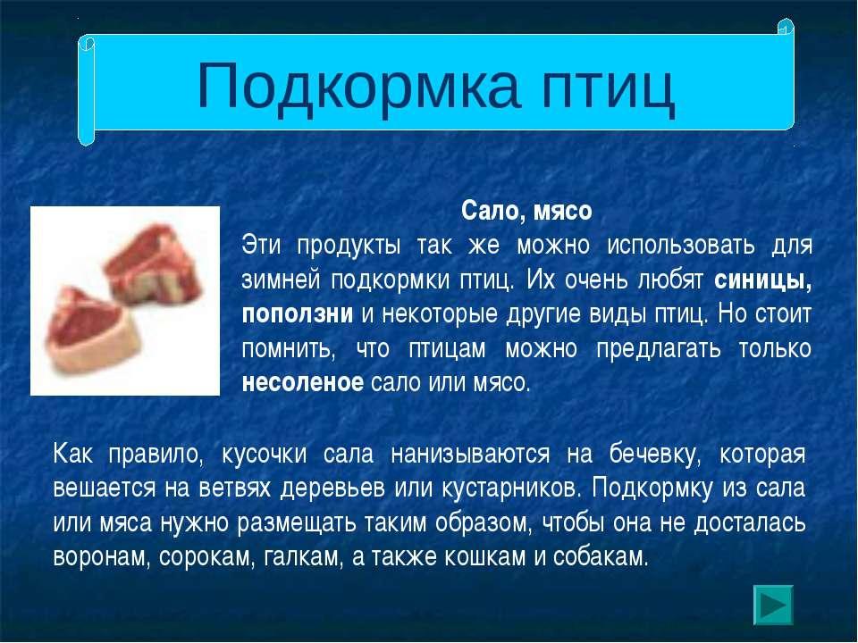Подкормка птиц Сало, мясо Эти продукты так же можно использовать для зимней п...