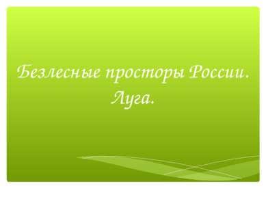 Безлесные просторы России. Луга.