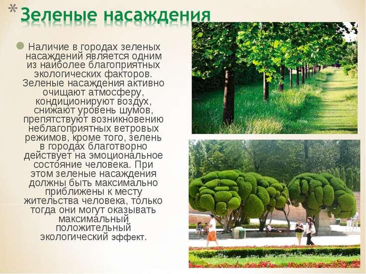 Наличие в городах зеленых насаждений является одним из наиболее благоприятных...