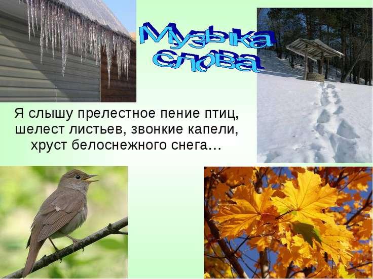 Я слышу прелестное пение птиц, шелест листьев, звонкие капели, хруст белоснеж...