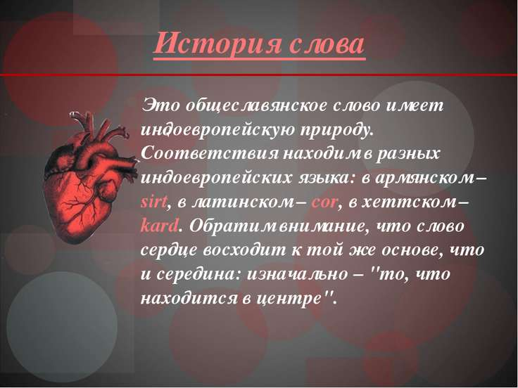 История слова Это общеславянское слово имеет индоевропейскую природу. Соответ...