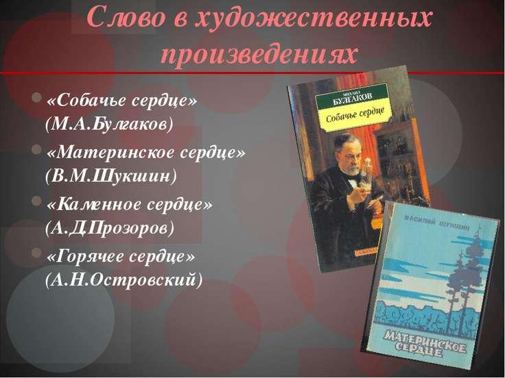 Слово в художественных произведениях «Собачье сердце» (М.А.Булгаков) «Материн...