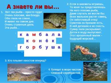 3. Кто плывет хвостом вперед? Вот так рыба – просто чудо! Очень плоская, как ...