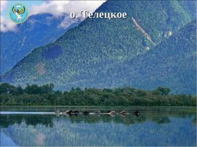 о. Телецкое
