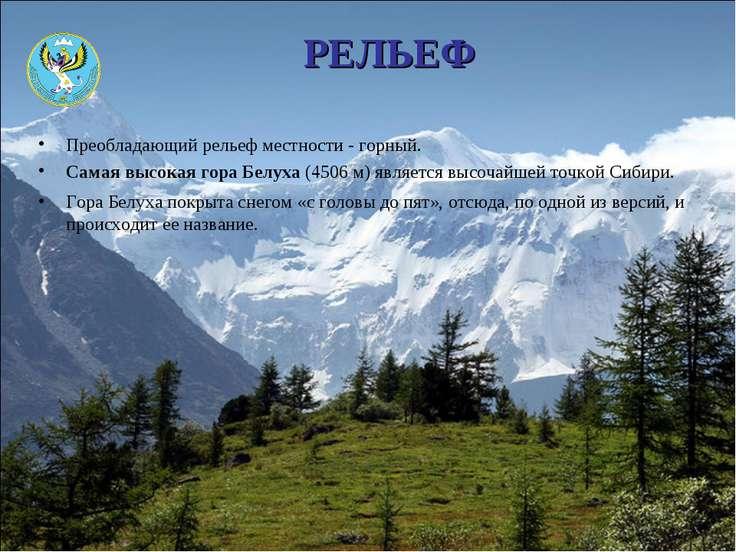 РЕЛЬЕФ Преобладающий рельеф местности - горный. Самая высокая гора Белуха (45...