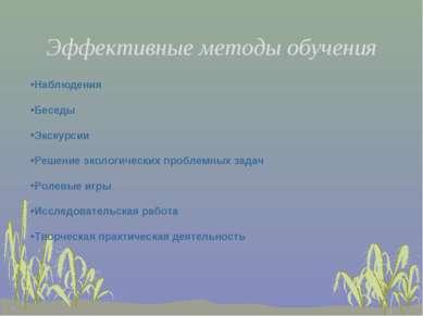Эффективные методы обучения Наблюдения Беседы Экскурсии Решение экологических...