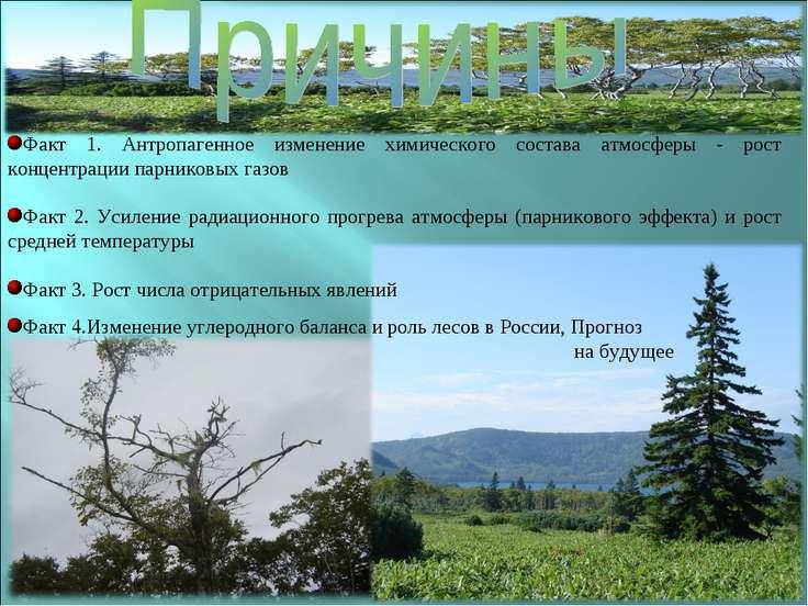 Факт 4.Изменение углеродного баланса и роль лесов в России, Прогноз на будущее
