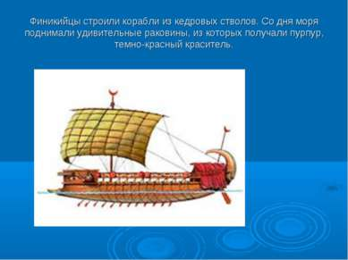 Финикийцы строили корабли из кедровых стволов. Со дня моря поднимали удивител...
