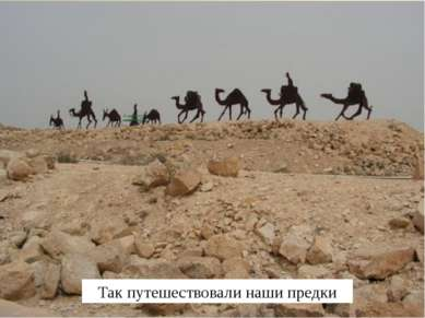 Так путешествовали наши предки