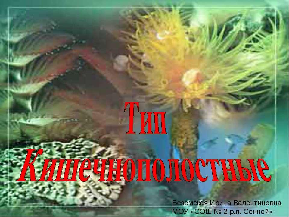 Беземская Ирина Валентиновна МОУ «СОШ № 2 р.п. Сенной»