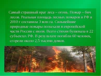 Самый страшный враг леса – огонь. Пожар – бич лесов. Реальная площадь лесных ...