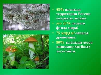 45% площади территории России покрыты лесами это 20% лесного фонда мира! 75 м...