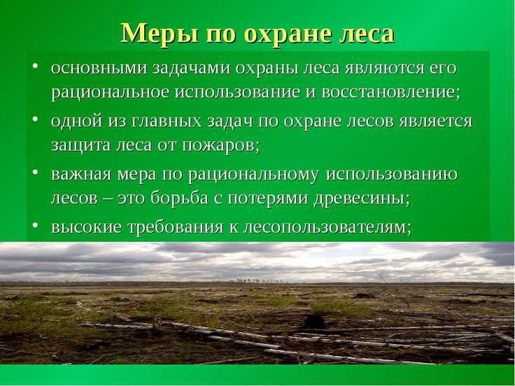 Меры по охране леса основными задачами охраны леса являются его рациональное ...