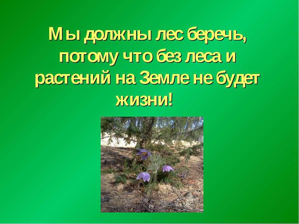 Мы должны лес беречь, потому что без леса и растений на Земле не будет жизни!