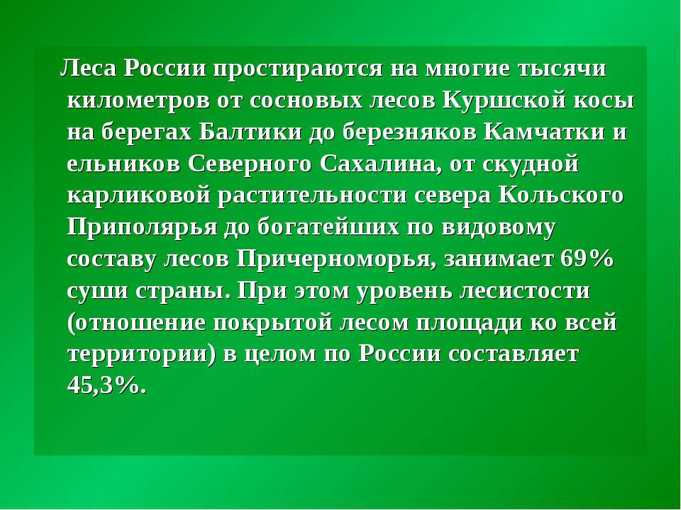 Леса России простираются на многие тысячи километров от сосновых лесов Куршск...