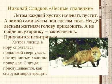 Николай Сладков «Лесные спаленки» Летом каждый кустик ночевать пустит. А зимо...