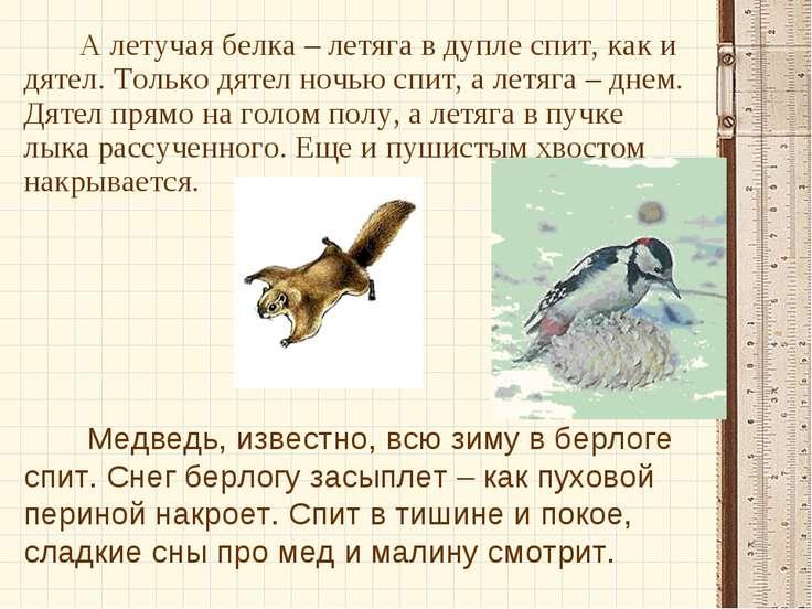 А летучая белка – летяга в дупле спит, как и дятел. Только дятел ночью спит, ...