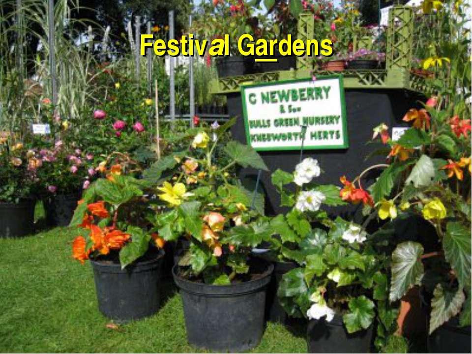 Festival Gardens