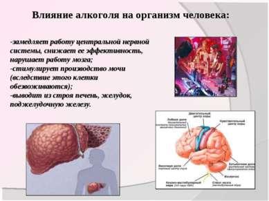 Влияние алкоголя на организм человека: -замедляет работу центральной нервной ...