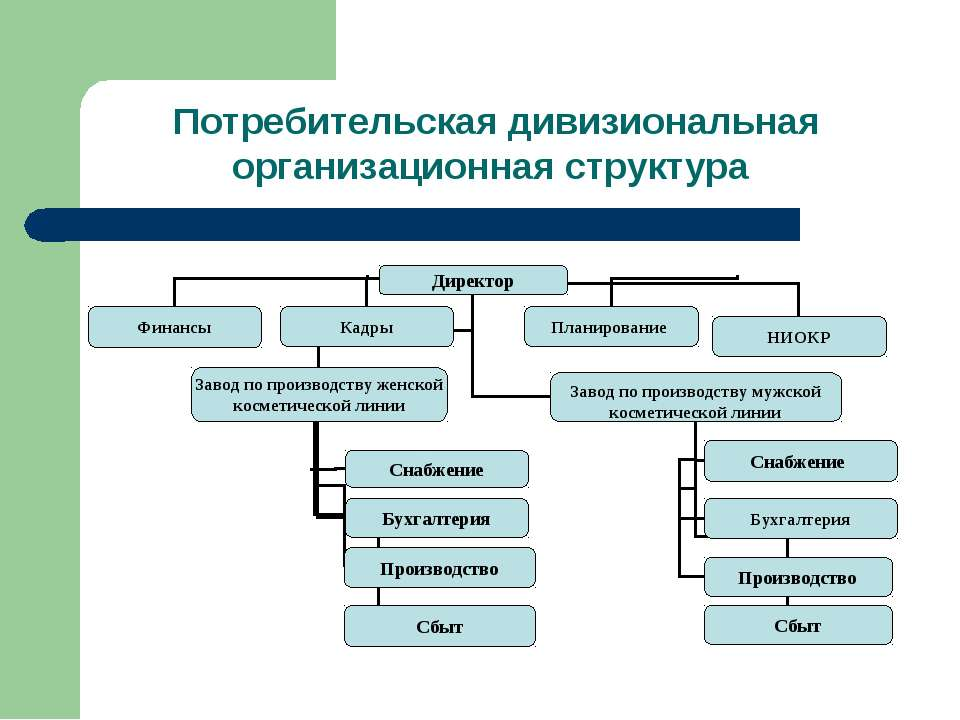 Потребительская дивизиональная организационная структура