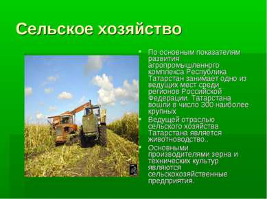 Сельское хозяйство По основным показателям развития агропромышленного комплек...