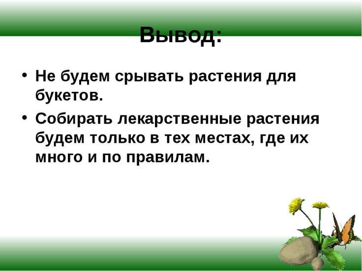 Вывод: Не будем срывать растения для букетов. Собирать лекарственные растения...