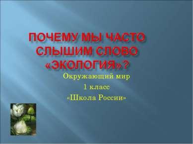 Окружающий мир 1 класс «Школа России»