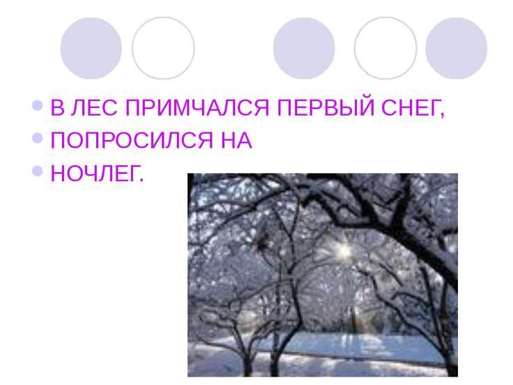 В ЛЕС ПРИМЧАЛСЯ ПЕРВЫЙ СНЕГ, ПОПРОСИЛСЯ НА НОЧЛЕГ.