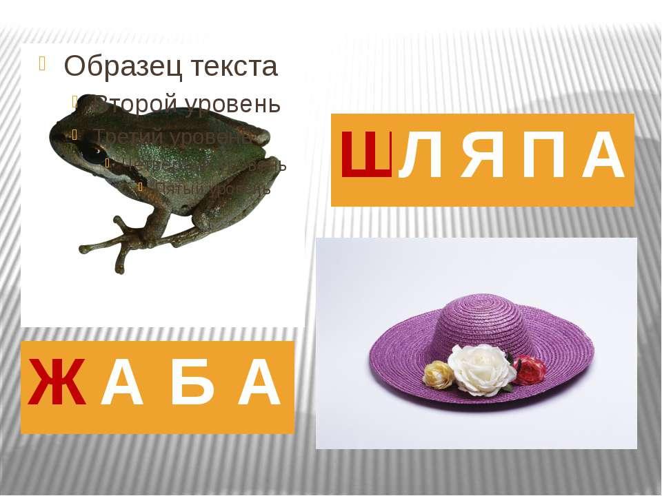 Ж А Б А Ш Л Я П А