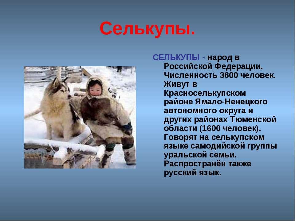 Селькупы. СЕЛЬКУПЫ - народ в Российской Федерации. Численность 3600 человек. ...