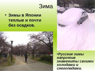 Зима Зимы в Японии теплые и почти без осадков. Русские зимы напротив знаменит...