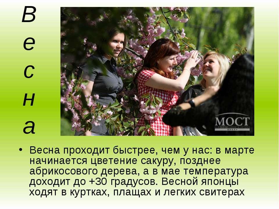 Весна Весна проходит быстрее, чем у нас: в марте начинается цветение сакуру, ...