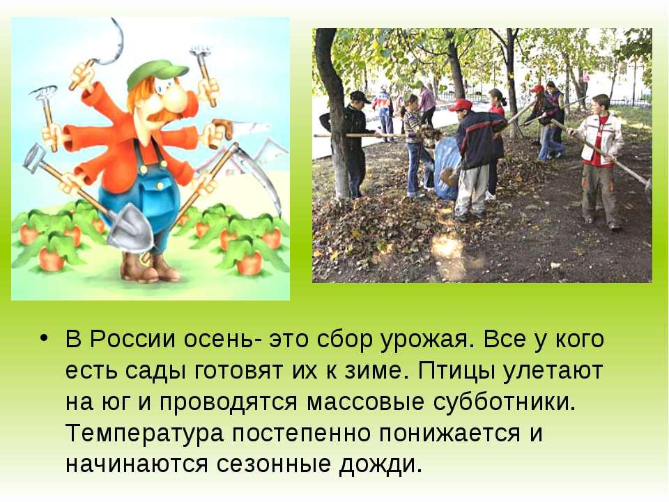 В России осень- это сбор урожая. Все у кого есть сады готовят их к зиме. Птиц...