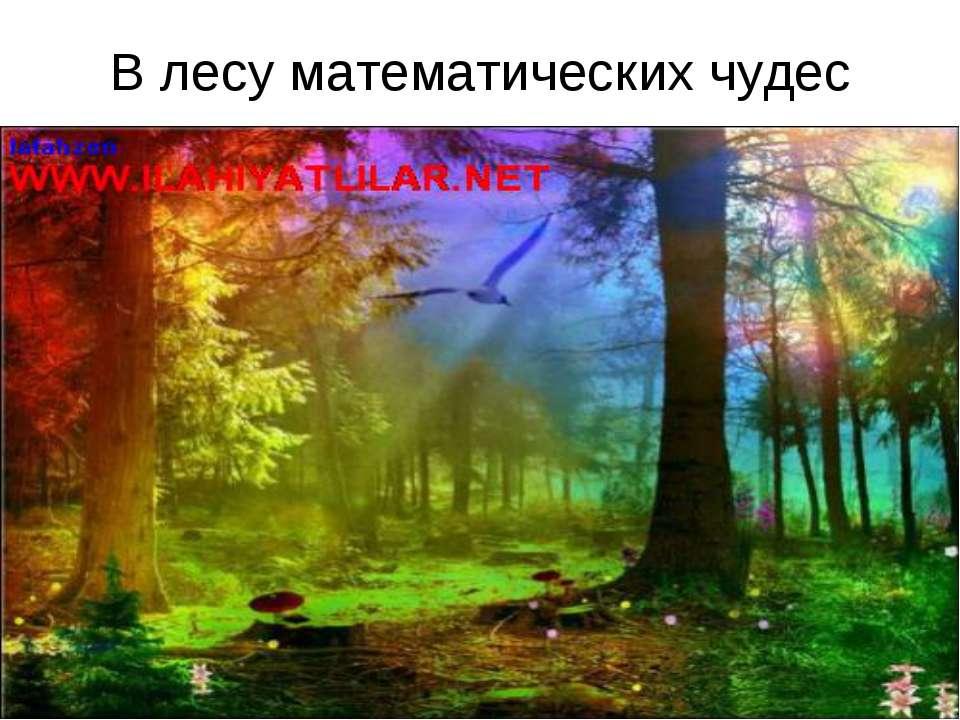 В лесу математических чудес