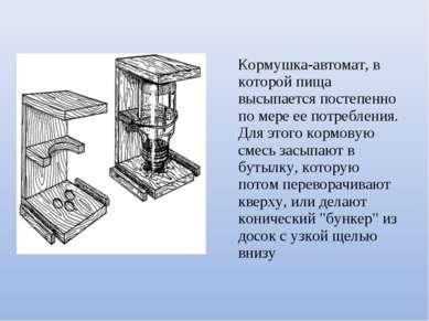 Кормушка-автомат, в которой пища высыпается постепенно по мере ее потребления...