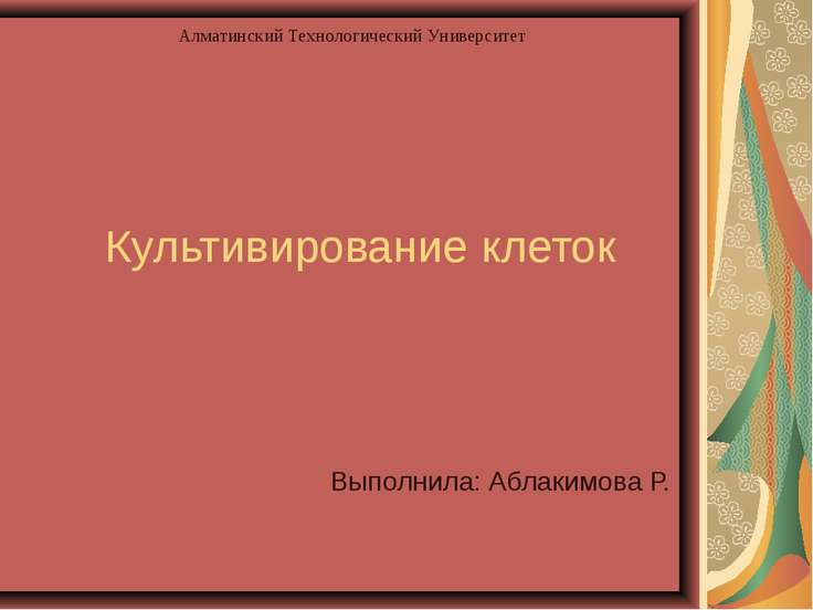 Культивирование клеток Выполнила: Аблакимова Р. Алматинский Технологический У...