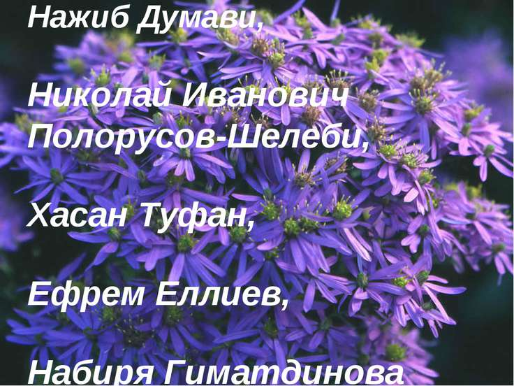 Нажиб Думави, Николай Иванович Полорусов-Шелеби, Хасан Туфан, Ефрем Еллиев, Н...