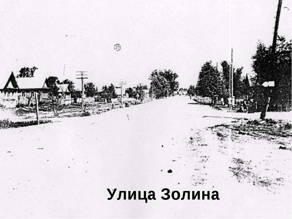 Улица Золина