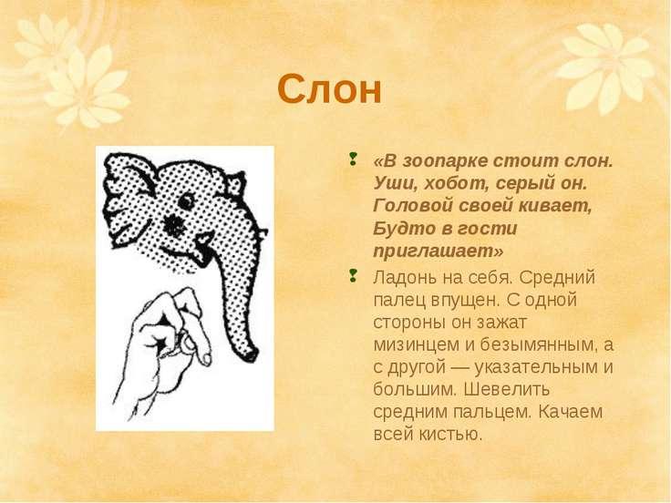 Слон «В зоопарке стоит слон. Уши, хобот, серый он. Головой своей кивает, Будт...