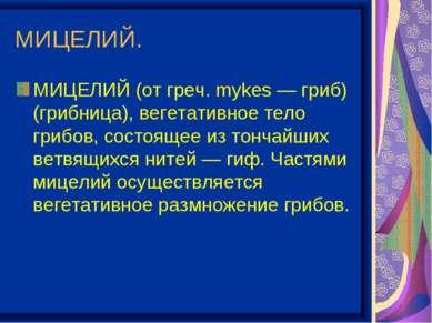 МИЦЕЛИЙ. МИЦЕЛИЙ (от греч. mykes — гриб) (грибница), вегетативное тело грибов...
