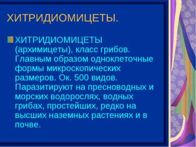 ХИТРИДИОМИЦЕТЫ. ХИТРИДИОМИЦЕТЫ (архимицеты), класс грибов. Главным образом од...