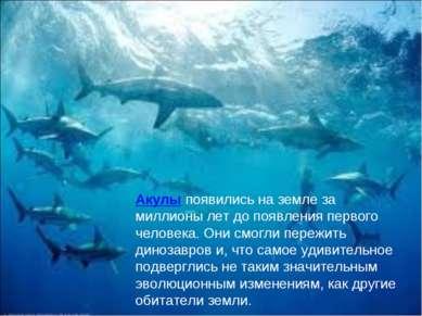 Акулы появились на земле за миллионы лет до появления первого человека. Они с...
